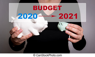 2021 Budget concept. Two piggy banks in a woman's hands