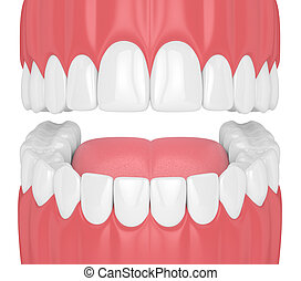 3d render of jaw with teeth