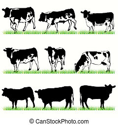 9 Cows and Bulls Silhouettes Set