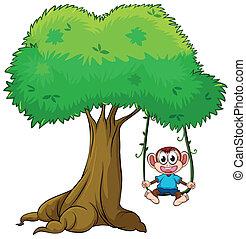A monkey playing swing on tree