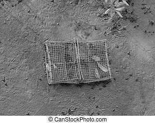 Abandoned net cage on the muddy ground of mangrove forest