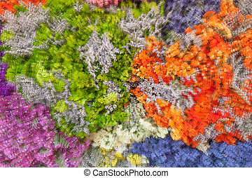 abstract background of colorful flowers