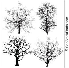 Dead Trees Vectors