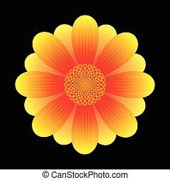 abstract sunflower flower