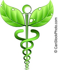 Vector illustration of a medical symbol with leaves instead of wings and a vine instead of serpents. Concept for alternative medicine or a combined use of alternative medicine and conventional medical practices.