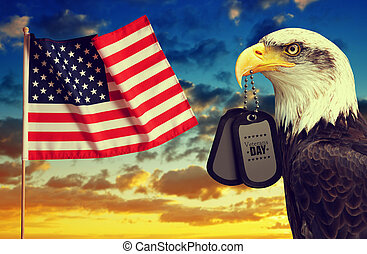 American flag and Bald Eagle holds a dog tags in his beak at sunset.