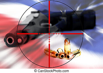 American Right to Bear Arms in Crosshairs