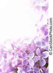 Art background lilac Spring flowers