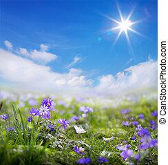 art floral spring or summer background