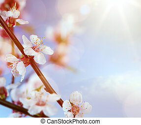 art spring flowers on the blue sky background