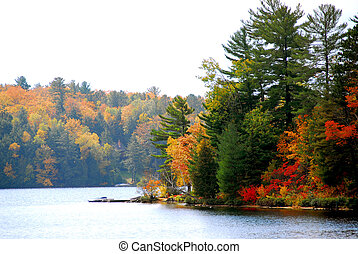 Lake and forest in the fall in northern Ontario