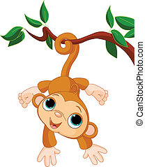 Baby monkey on a tree