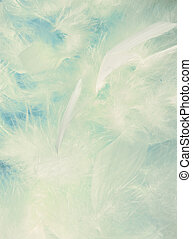 Background of fluffy cloud-like feathers