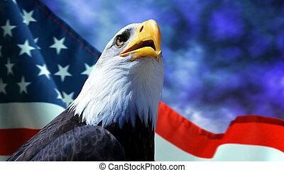 Bald Eagle and American flag.