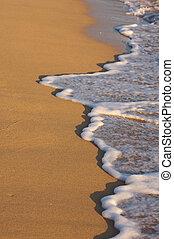 Beach Shoreline in the Early Morning Sun,