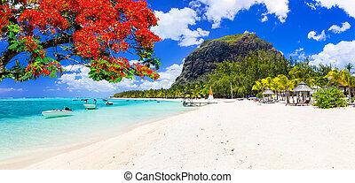 Panoramic view of Le Morne beach, white sand, azure sea and mountains, Mauritius island.