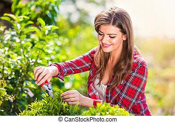 Beautiful gardener pruning little tree, green sunny nature