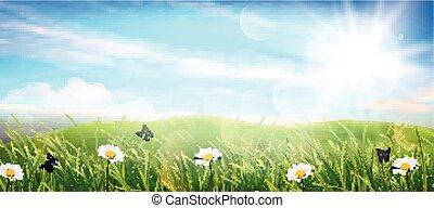Beautiful spring meadow