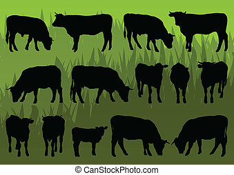 Beef cattle and cow detailed silhouettes illustration collection background vector