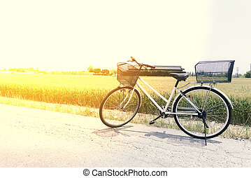 Bicycle on the road and rice field