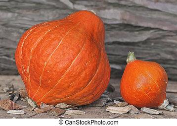 big and little pumpking