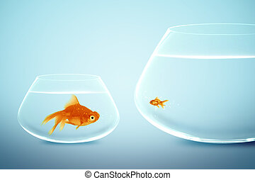 Big and small goldfish, conceptual image for diet, fat.