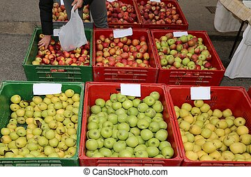 big boxes of fruit with the ripe apples