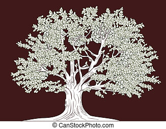 Big tree vector graphical drawing