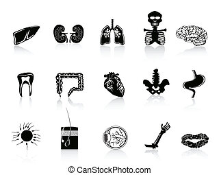 black human anatomy icon