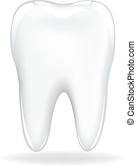 Brilliant Tooth, Isolated On White Background, Vector Illustration