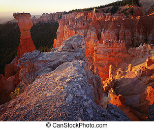 Bryce Canyon National Park Towers at Sunrise, Utah Great for nature, wilderness, adventure, exploration, travel, backcountry and outdoor recreation themes.