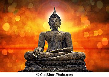 Buddha statue over scenic lighting