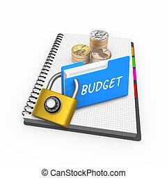 Budget Business Finance theme