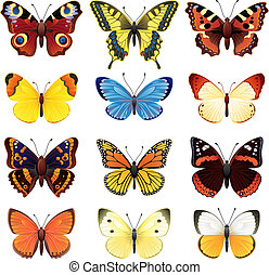 Vector illustration - butterfly icon set