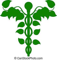 Caduceus DNA or holistic medicine concept