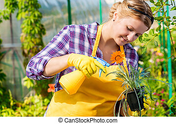 Care for flowers in the nursery, young girl with a flower