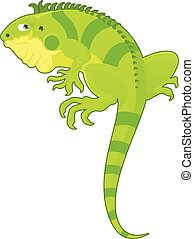 Cartoon Iguana