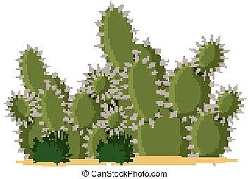 Catus plants cartoon style on white background