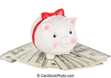 Ceramic white pig moneybox stand on cash dollars