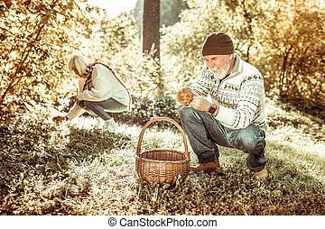 Cheerful senior man gathering mushrooms with his wife.
