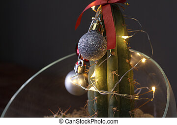 Christmas in tropical climate concept. Cactus as hipster christmas tree with christmas decoration