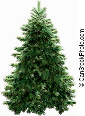 Christmas tree with clipping path