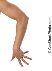 Close up image of human arms against white background