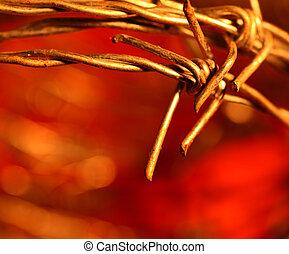 Close up of golden Thorns