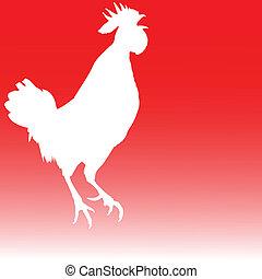 cock white illustration