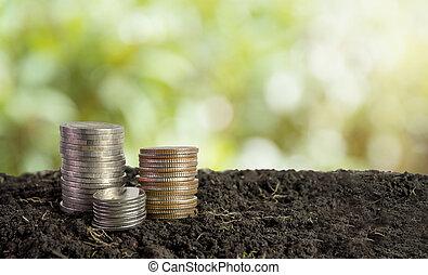 coins in soil, saving money concept