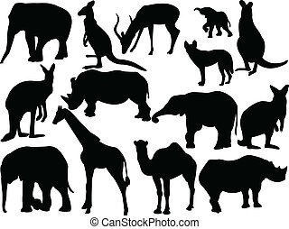 Collection of wild animals