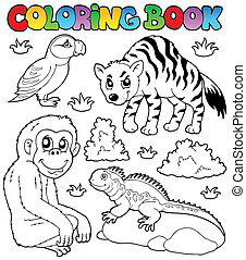 Coloring book zoo animals set 2