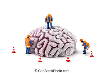 Concept image of miniature construction workers inspecting a brain. There are small caution cones around the brain. White background.