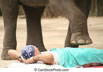 a man gets stepped on by an elephant